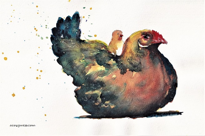 hen chick artwork